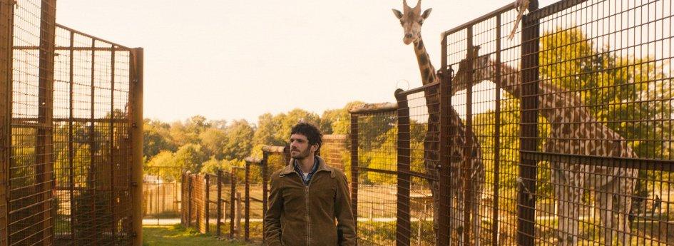 Кино: «Любовь и прочий зоопарк»