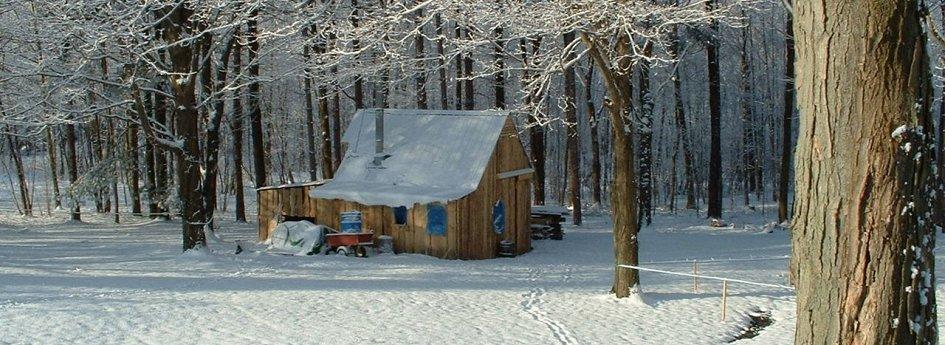 Кино: «Снег»