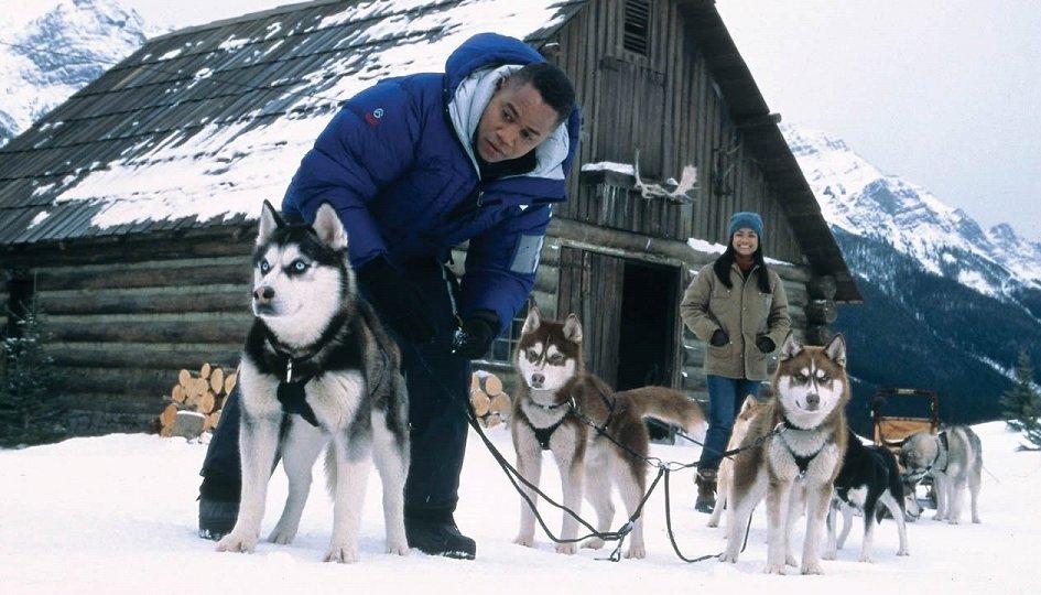 Кино: «Снежные псы»