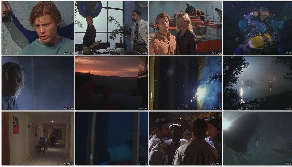 Кино: «Акулы»