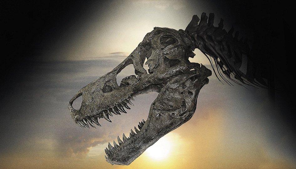 Кино: «Динозавр 13»