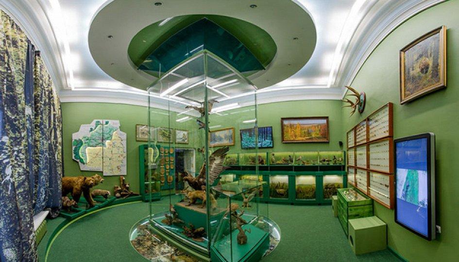 Выставки: Зал природы в Тульском краеведческом музее