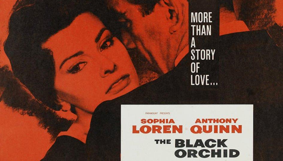Кино: «Черная орхидея»