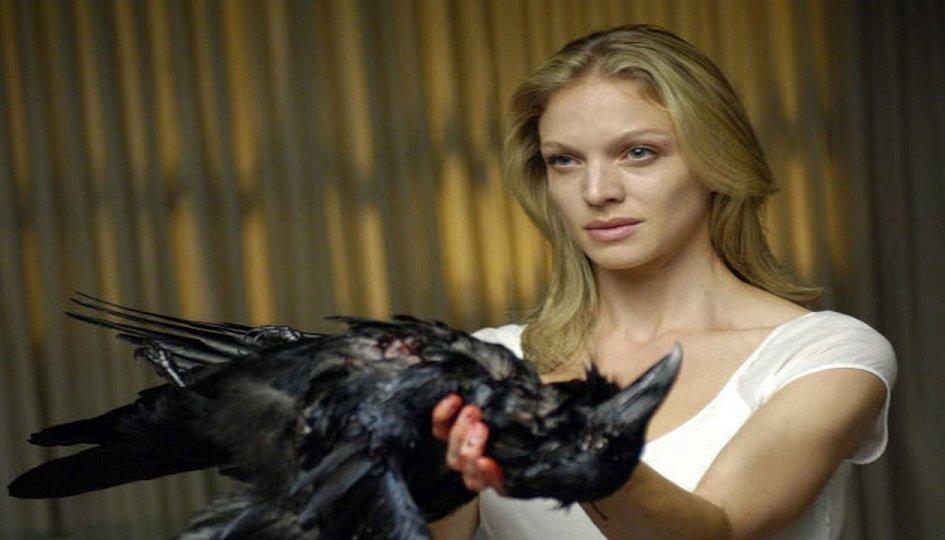 Кино: «Следы ведьм»