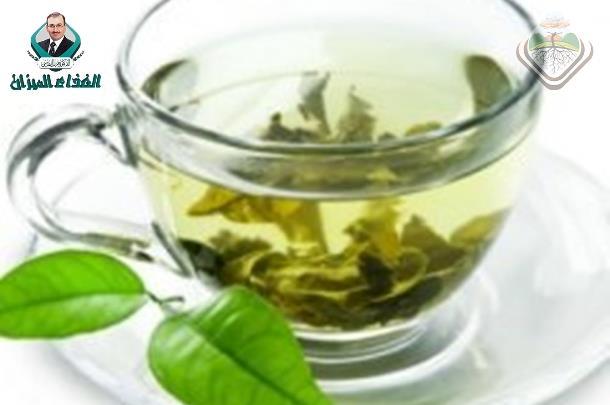 Зеленый кофе для похудения: реальные отзывы
