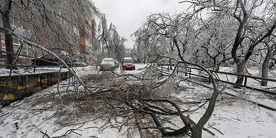 Последствия ледяного дождя вПриморье. Главное