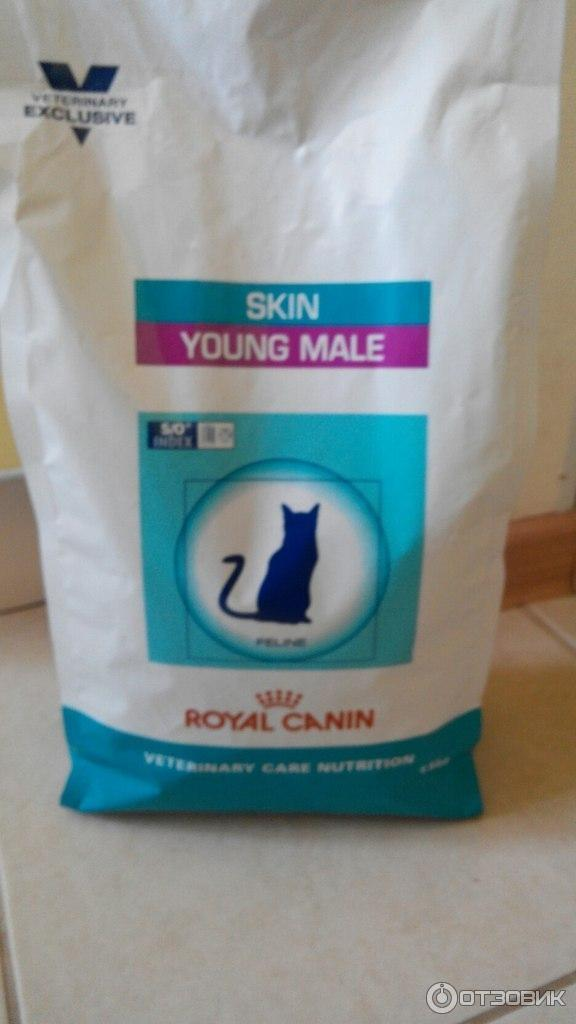 Корм royal canin шотландская