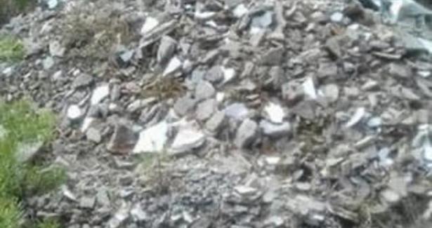 Пенсионерки собрали 50мешков мусора влесу возле Песчанки