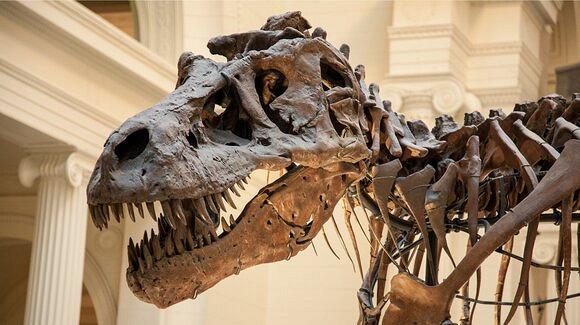 Причиной гибели динозавров стало падение астероида
