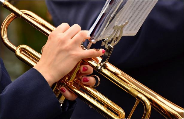Маршевый духовой оркестр вХорошевке стал победителем XIIМеждународного телевизионного IT-ONLINE конкурса