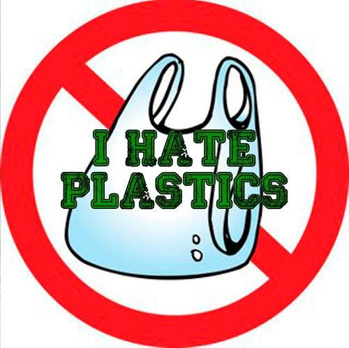 Polythene Bags Should Be Banned Essay - Style Guru