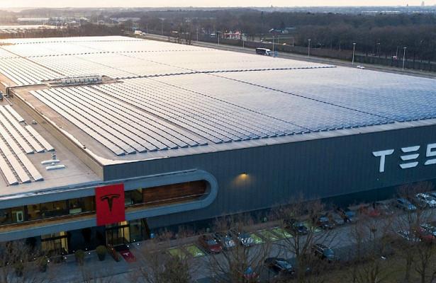 Строительство завода Tesla вГермании остановили из-зазмей