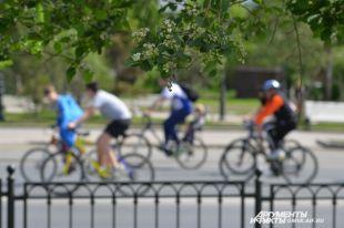 Полторы тысячи человек приняли участие в«ВелоОмске»