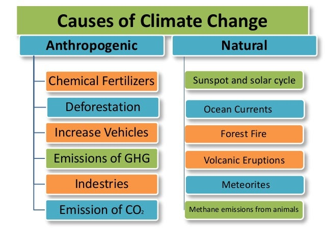 Write my causes and effects of climate change essays
