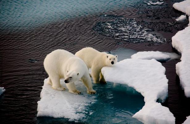 Facebook будет бороться снедостоверной информацией обизменении климата