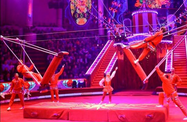 Первый каменный столичный цирк празднует юбилей