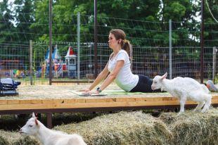 Йога скозами. Какрогатые помогают тренировкам