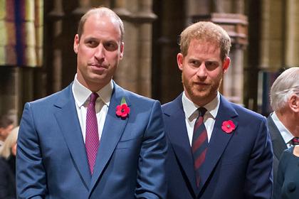 Стало известно озависти принца Уильяма к«обаятельному мерзавцу» принцу Гарри