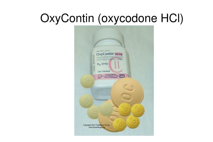Largest mg oxycontin