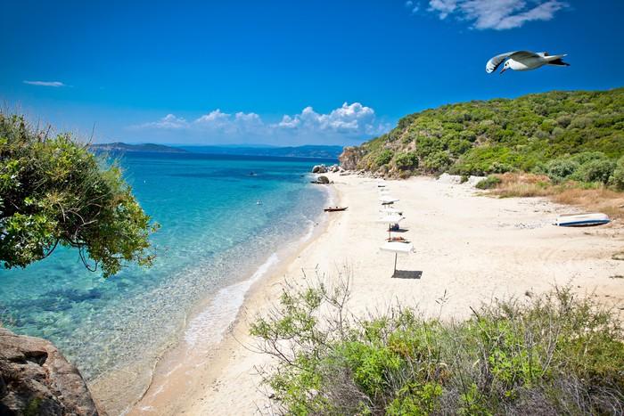 Землю в остров Уранополис на берегу моря недорого