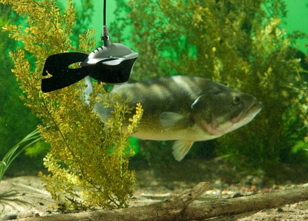 Подводная камера marcum купить алиэкспресс