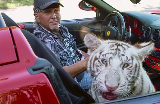 Минюст СШАподал искожестоком обращении сживотными кдрессировщику изсериала «Король тигров»