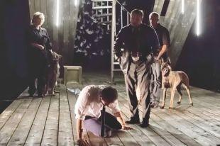 Собаки стали актёрами репертуарного спектакля вОмской драме