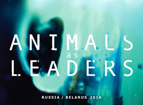 Animals as Leaders (США)