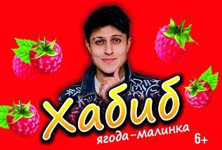 «Ягода-малинка»: Хабиб