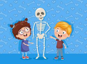 Зачем художнику скелет? Экскурсия по основной экспозиции для детей 7-12 лет